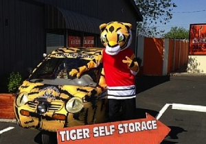 Tiger Self Storage - North Highlands - 2718 Q Street - Photo 2