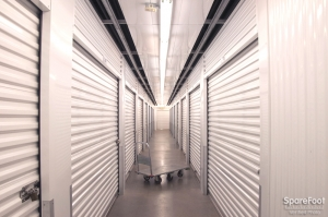 Picture of Armadillo Self Storage