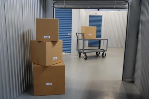 Wesley Chapel Storage - Photo 4