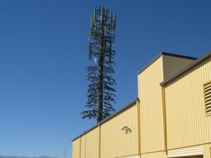 Storage West - Centennial Ranch - Photo 8