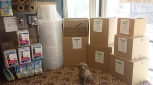 Newtown Self Storage - Photo 2