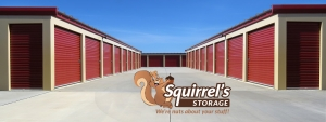 Squirrel's Storage