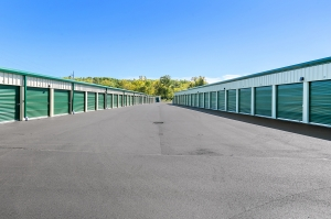Mini Storage Depot - Walker Avenue - Photo 5