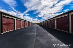 CubeSmart Self Storage - Romulus - 28075 Van Born Road - Photo 5