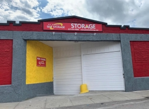 Image of Planet Self Storage - Dorchester Facility at 250 Woodrow Avenue  Boston, MA