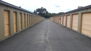 Image of Life Storage - Tampa - 815 East Fletcher Avenue Facility on 815 East Fletcher Avenue  in Tampa, FL - View 2