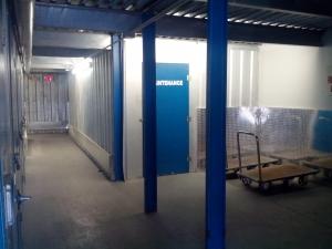 Flea Storage