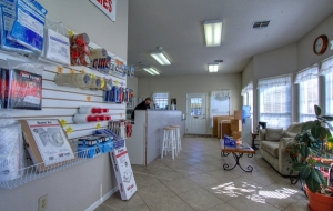 Storage Choice - Clear Lake - Photo 18