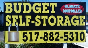 Picture of Budget Self Storage