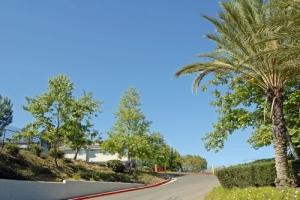 Image of Laguna Woods Self Storage Facility on 24151 Moulton Pky  in Laguna Hills, CA - View 2