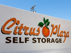 Image of Citrus Plaza Self Storage Facility on 202 W College St  in Fallbrook, CA - View 2