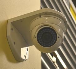 Safeguard Self Storage - Bridgeview - Photo 14