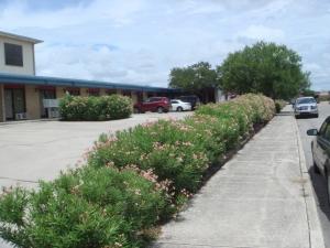 Picture 2 of Alamo Broadway Mini-Storage - FindStorageFast.com