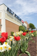 Photo of Self Storage Plus - Southlawn
