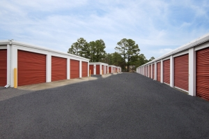 Image of StorageMart - Irvinedale & 1st St Facility on 205 SW Irvinedale Dr  in Ankeny, IA - View 3