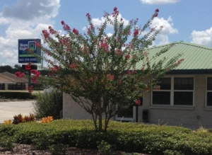 Photo of StoreRight Self Storage - Winter Haven
