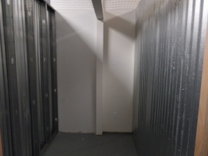 Picture of Maximum Storage - Lansing