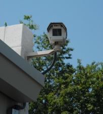 Sentinel Self Storage - Millsboro - Photo 3