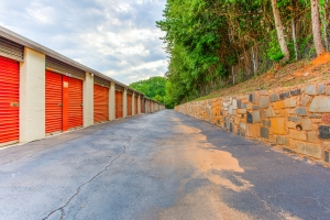 Simply Self Storage - 2804 H F Shepherd Drive - Panthersville - Photo 6