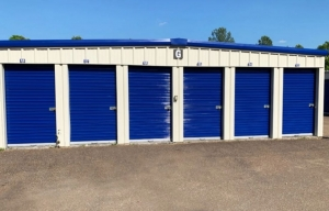 Simply Self Storage - 314 S Mount Pleasant Road - Collierville - Photo 11