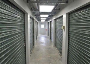 Image of Chestnut Storage Facility on 220 Chestnut Street  in Painesville, OH - View 3