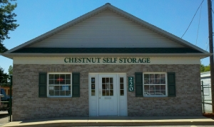 Image of Chestnut Storage Facility on 220 Chestnut Street  in Painesville, OH - View 2