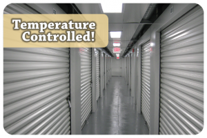 Storage Solutions Climate Controlled Self Storage - East Greenbush/Rensselaer - Photo 4