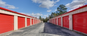 10 Federal Self Storage -1351 Lake Dogwood Dr, W Columbia, SC 29170 - Photo 3
