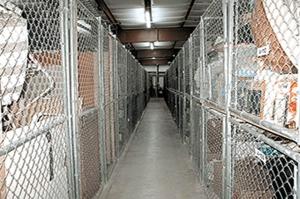 Image of Public Storage - Greenacres - 3800 Jog Road Facility on 3800 Jog Road  in Greenacres, FL - View 2