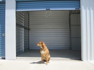 Image of Loomis Self Storage Facility on 5950 Jetton Ln  in Loomis, CA - View 2